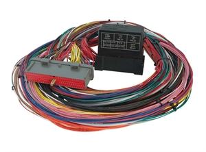 AEM Universal EMS Wiring Harness on
